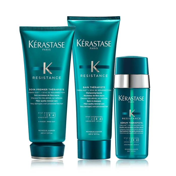Therapiste Damaged Hair Set