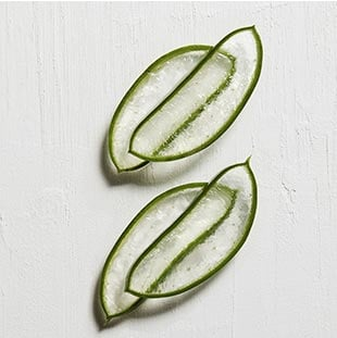 Emily Ratajkowski's Kerastase Aura Botanica Hair Care