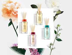 The Kérastase Aura Botanica collection, a luxurious natural experience.